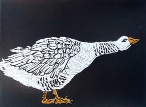 Bev Mitchell-Symons--[goose]